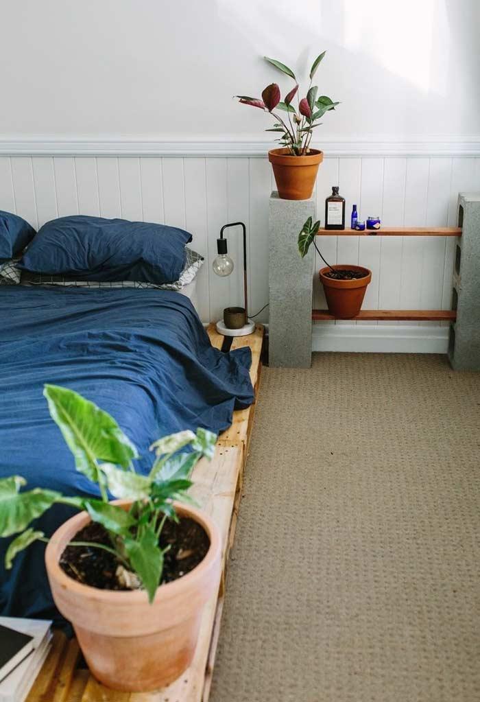 espaço extra para plantinhas e livros