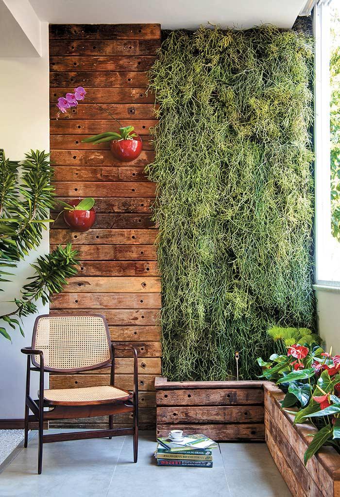 Meia parede com plantas pendentes