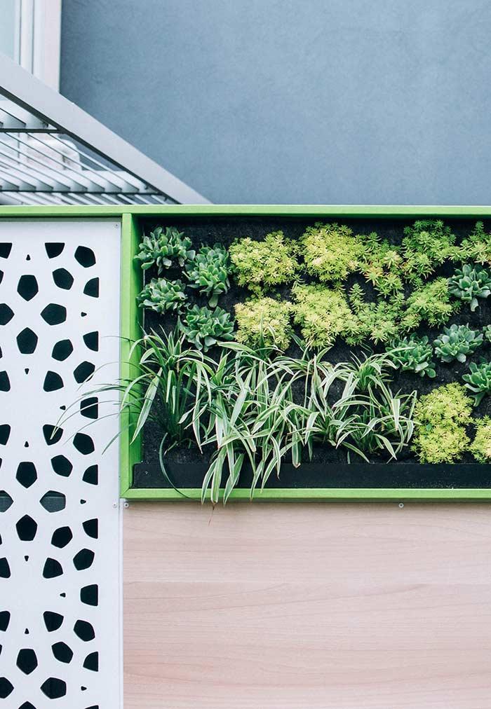Jardim vertical dentro do nicho da parede