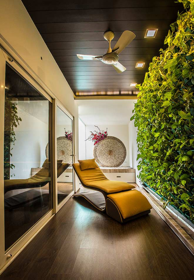 Plantinhas para ajudar a relaxar