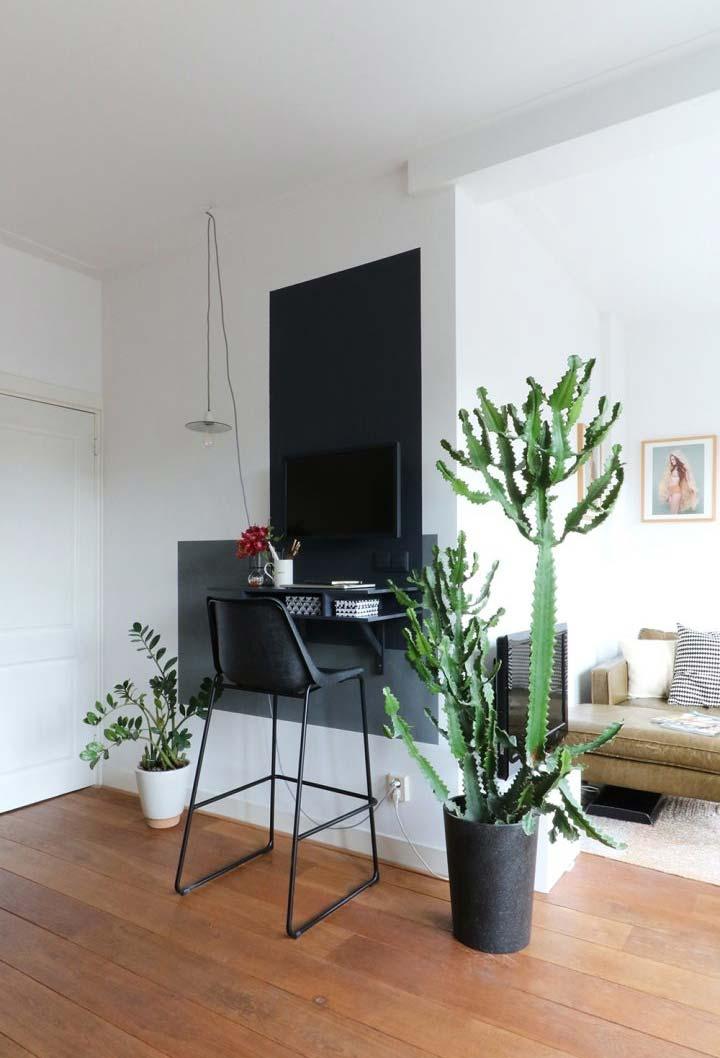 Plantinhas e cactos para dar um toque de natureza para o seu home office
