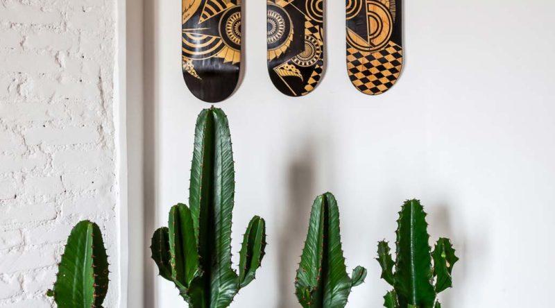 Cactos na decoração: ideias criativas para decorar com perfeição
