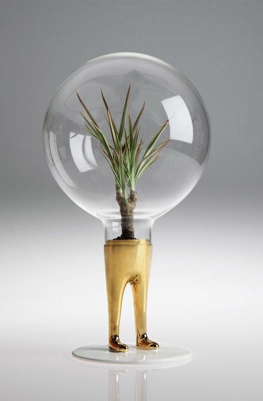 Original e bem criativo, esse tipo de terrário combina com propostas de decoração mais joviais