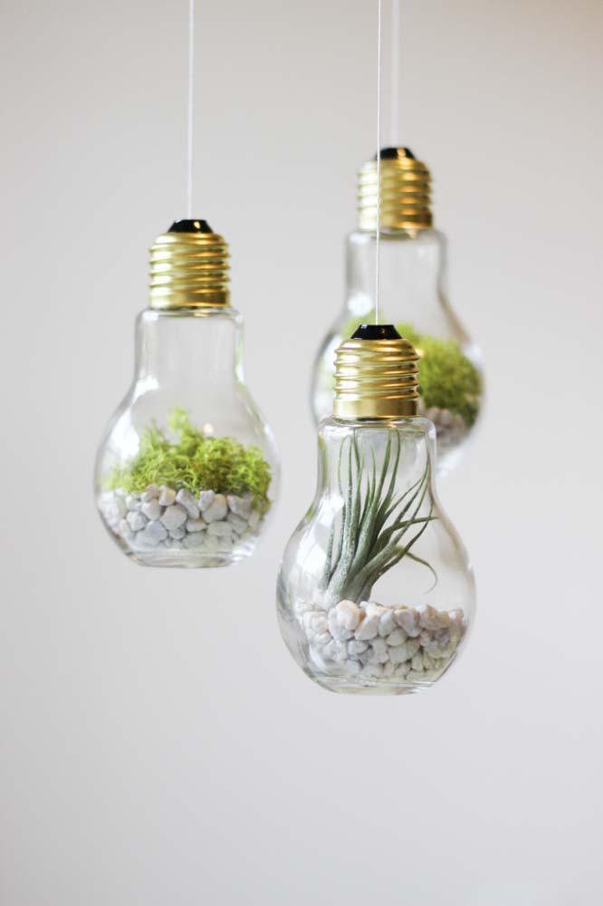 Lâmpadas incandescentes suspensas abrigam lindos e delicados terrários