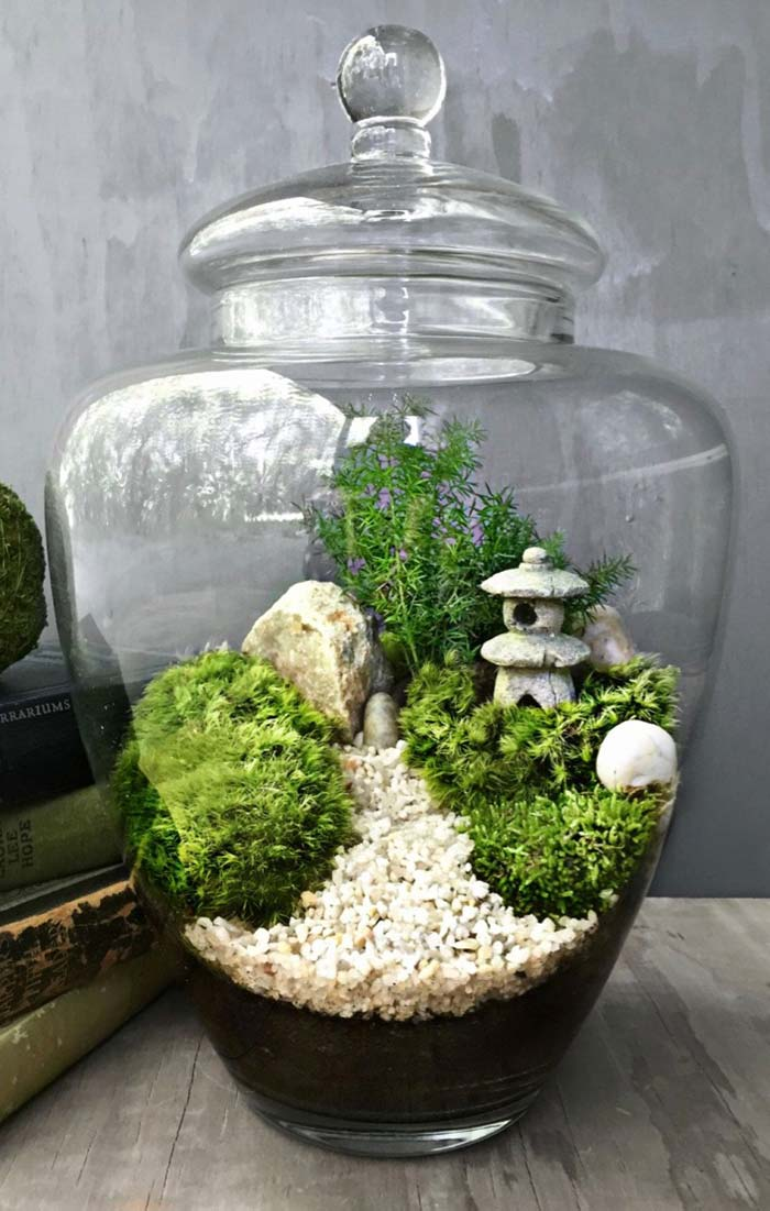 Jardim japonês reproduzido dentro do terrário