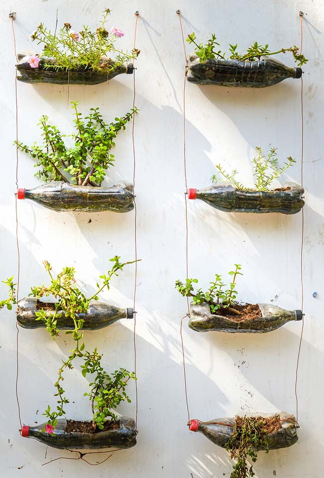Artesanato com garrafa pet vasos para horta vertical