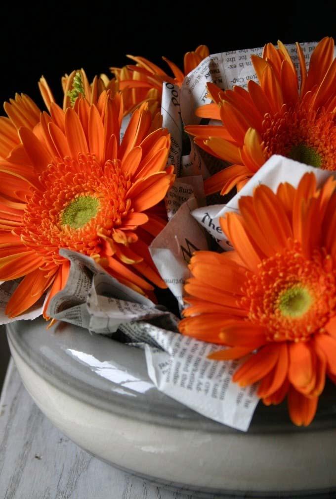 Jornal velho no arranjo para proteger suas flores
