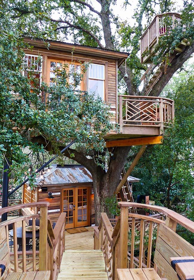 Complexo de casas na árvore