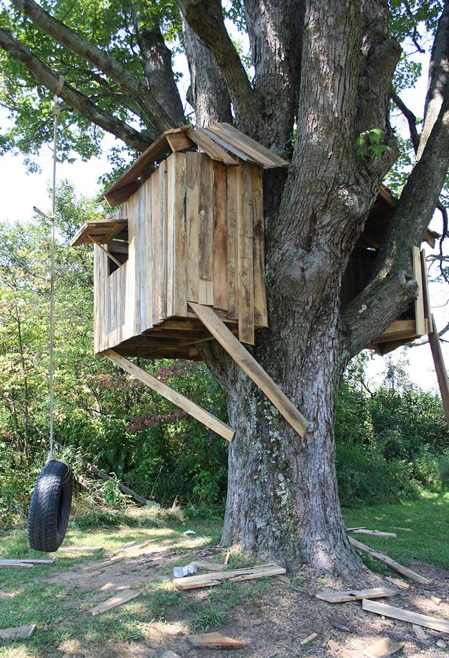 Casas na árvore simples