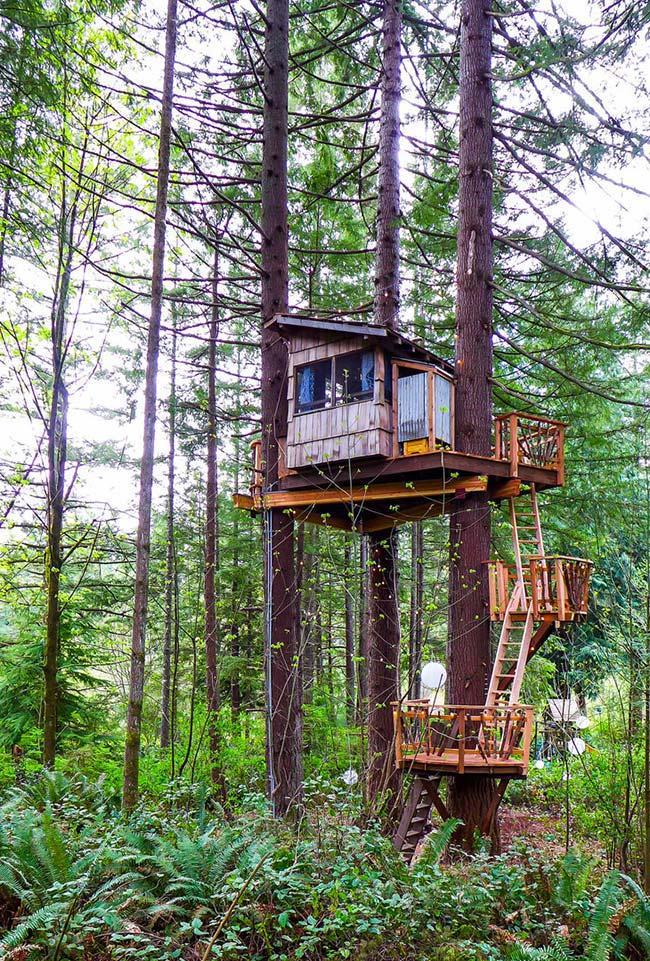 Uma casa no topo da árvore