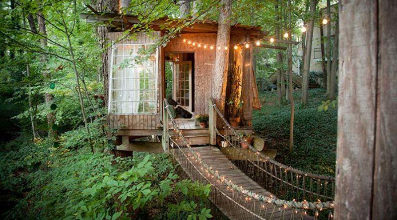 Casa na árvore: 50 projetos de verdadeiras fortalezas