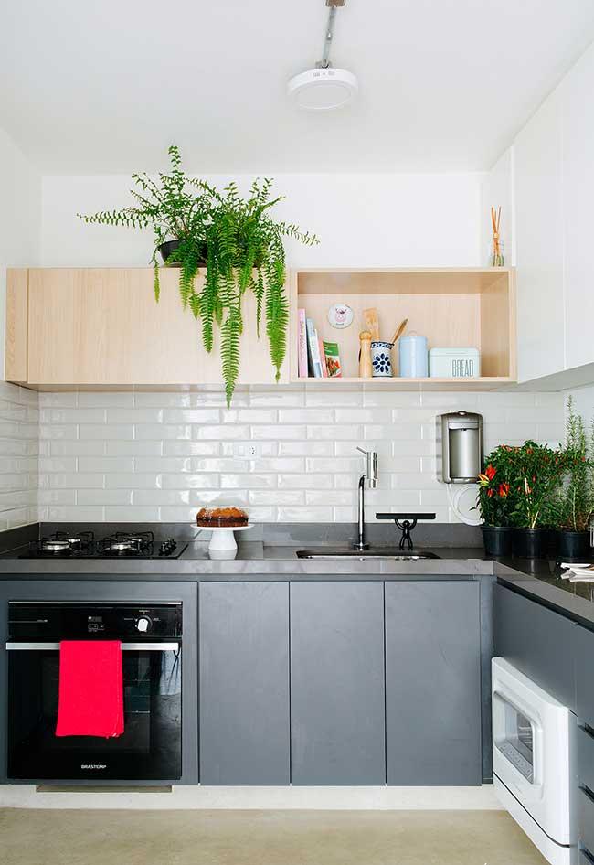 Traga mais vida para dentro da sua cozinha moderna