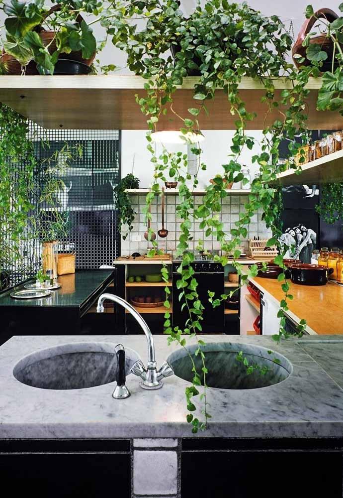 Invista na decoração com prateleiras e enfeite com muitas plantas e flores para uma cozinha com cara de natureza