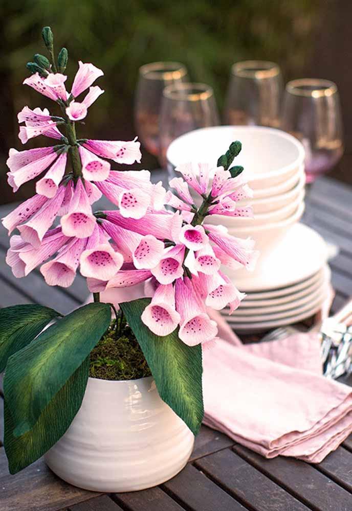 Flores de papel Dedaleira : Planta ornamental, muito bonita que fica encantadora numa mesa ao ar livre