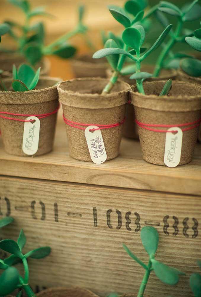 Um vasinho com planta é uma ótima opção de lembrancinha de casamento. Mas para fazer algo diferente, aposte em um vaso com estilo bem rústico.