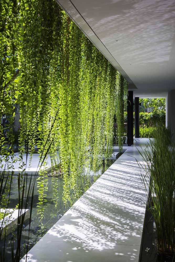 Uma cascata verde para conduzir quem caminha pelo corredor