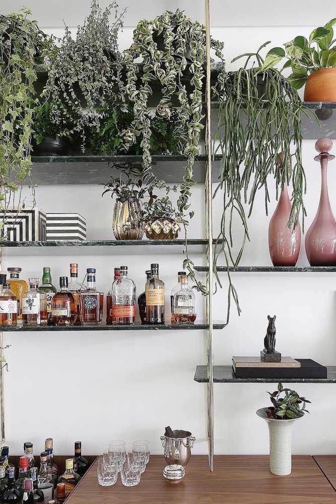 As plantas trazem vida e alegram os ambientes da casa