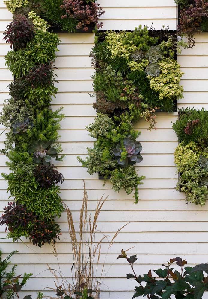 Forme desenhos e formas com as plantas do jardim suspenso