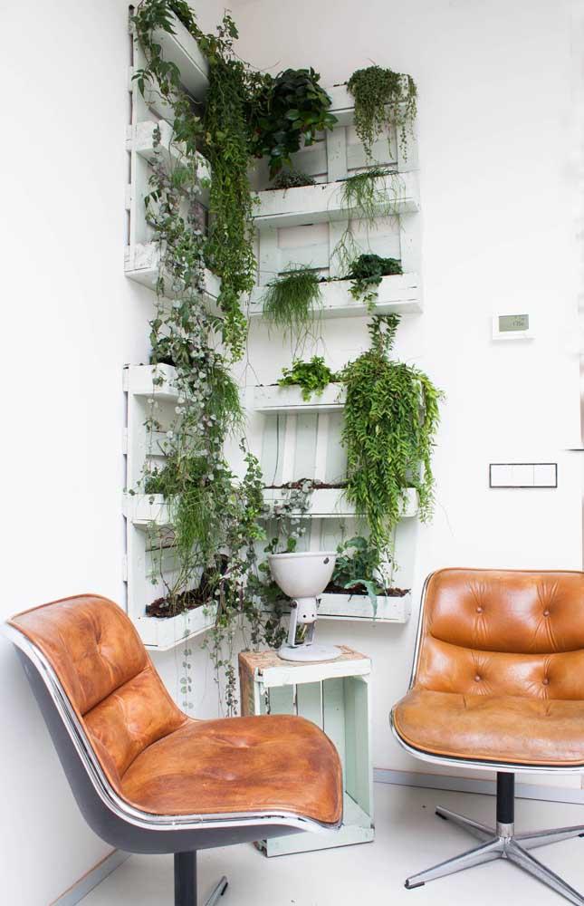 Dê uma renovada na cara dos pallets pintando-os de branco; repare como as plantas verdes se destacam sobre ele