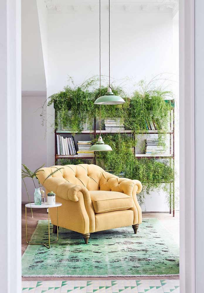 A estante da sala se divide entre livros e plantas