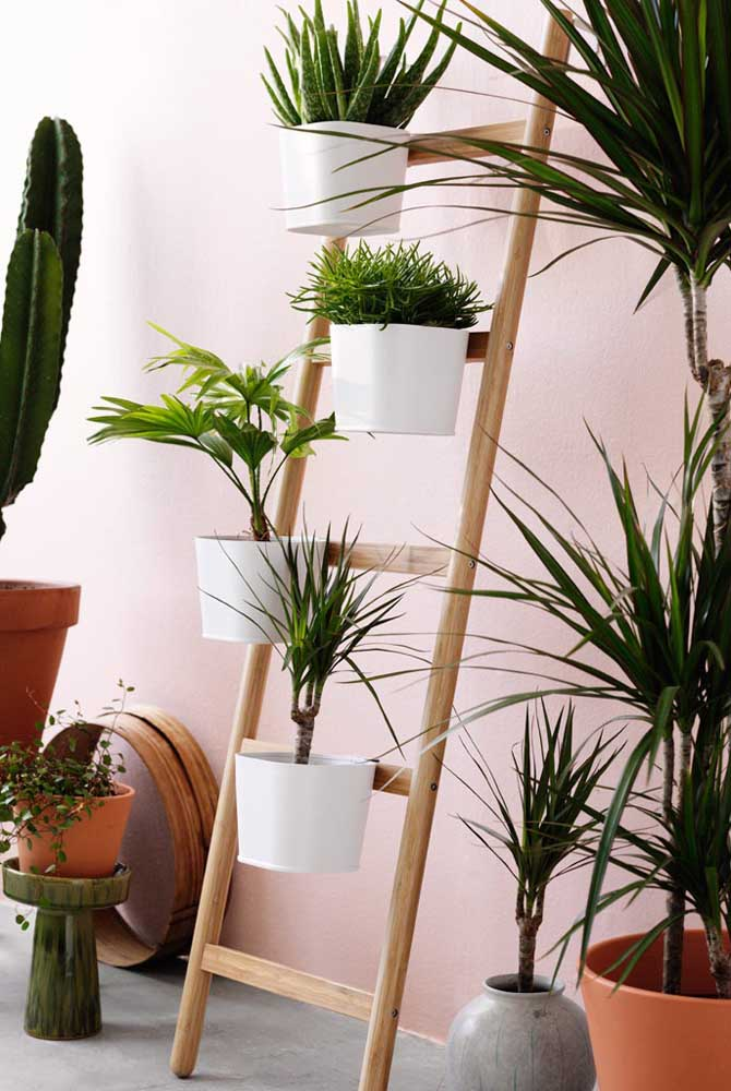 Uma escada usada também se torna uma ótima opção para criar um jardim suspenso