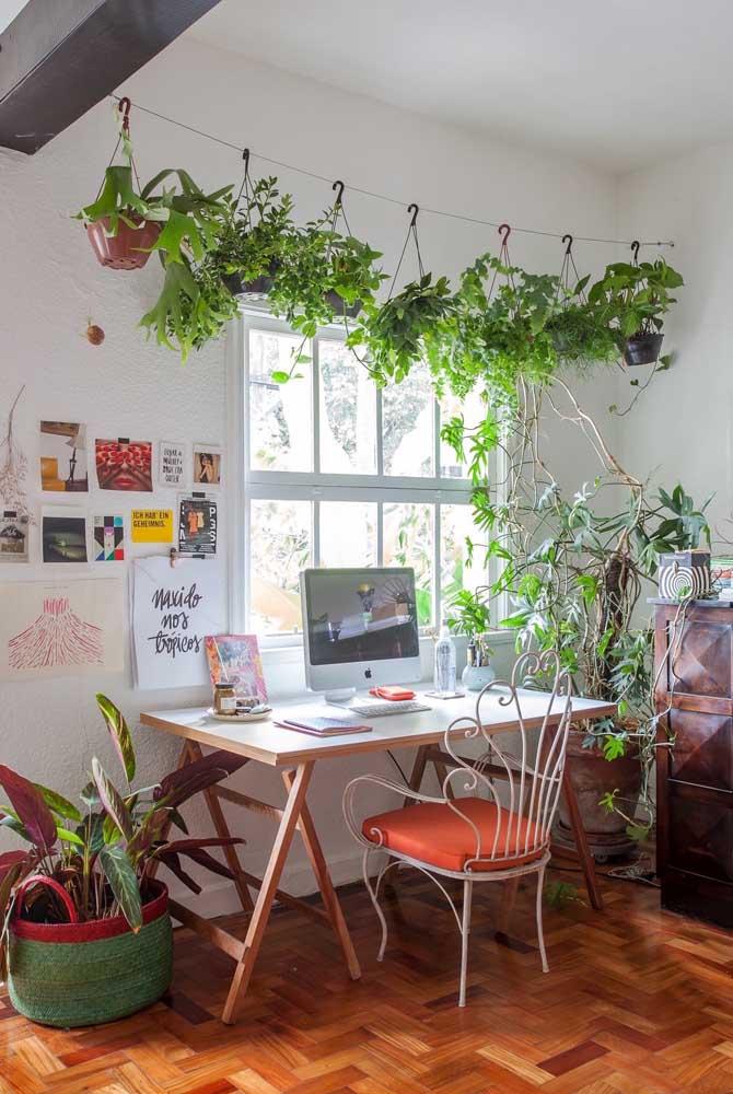 O home office fica muito mais agradável com um jardim suspenso como esse; repare como a ideia é simples, as plantas são suspensas como roupas no varal