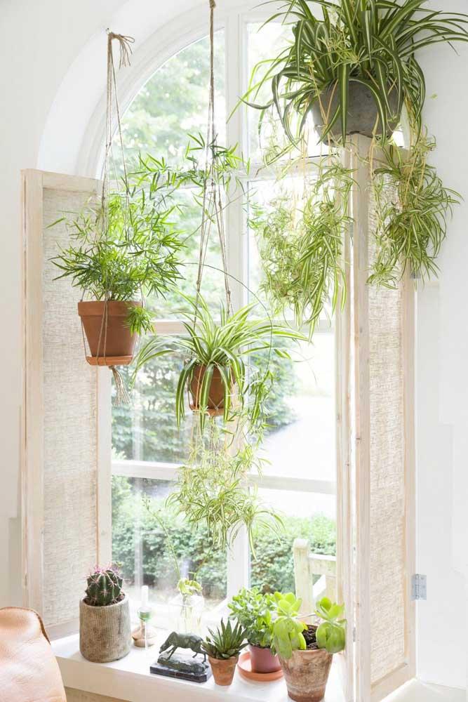 Os vasos de barro foram os escolhidos para esse jardim suspenso com fios de macramê