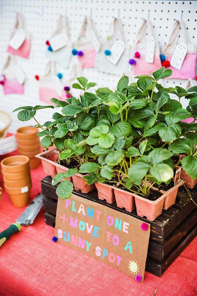 Uma ideia original é entregar algumas mudas de plantas para os convidados plantarem.