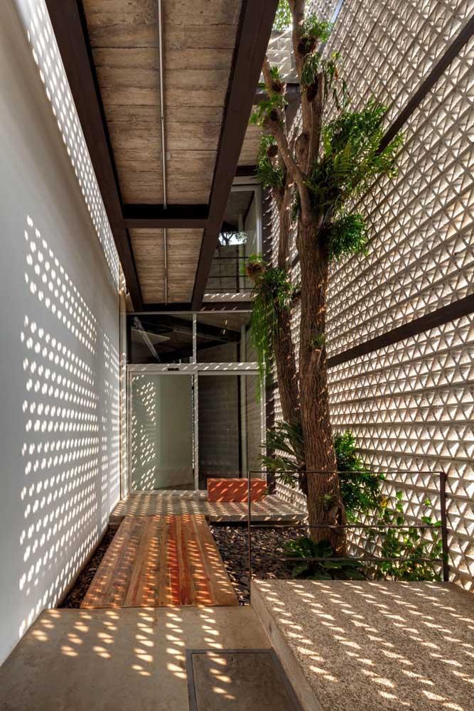 Até uma árvore é possível colocar dentro de casa, basta fazer um espaço adequado para isso.