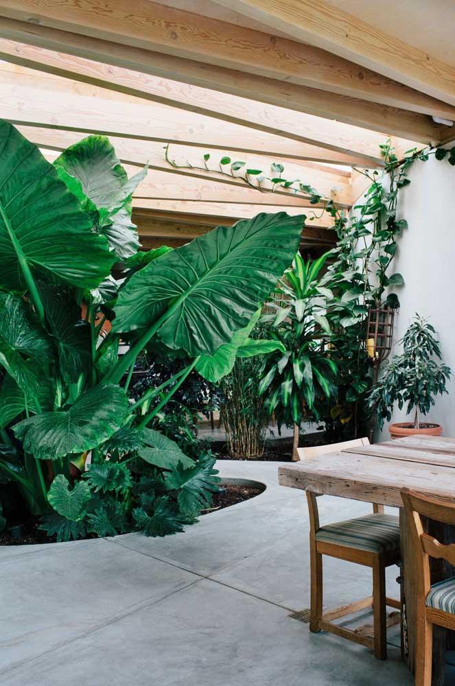 O jardim de inverno pode ser feito no meio da casa, principalmente, se você for usar plantas altas que ajudam a decorar o ambiente.