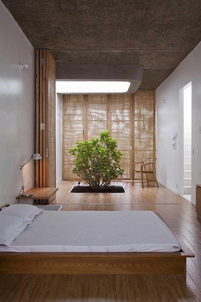Que tal reservar um cantinho no seu quarto para plantar a sua árvore favorita?