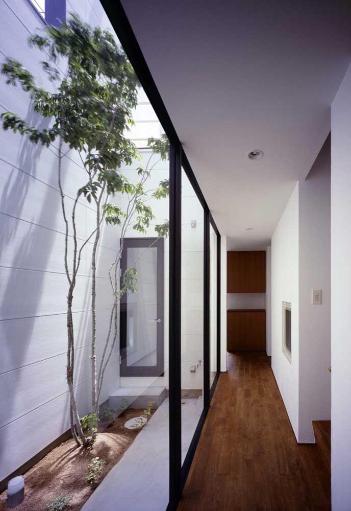 Ou usa uma área do corredor que tenha uma boa altura para fazer o jardim de inverno.