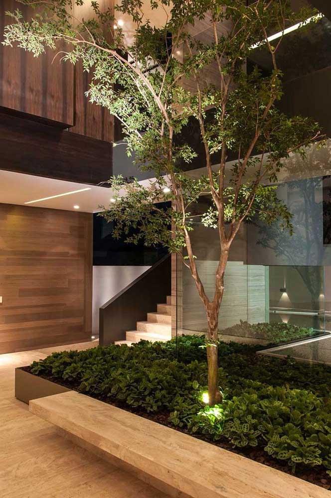 Plante várias mudas e coloque uma pequena árvore para destacar o seu jardim de inverno.
