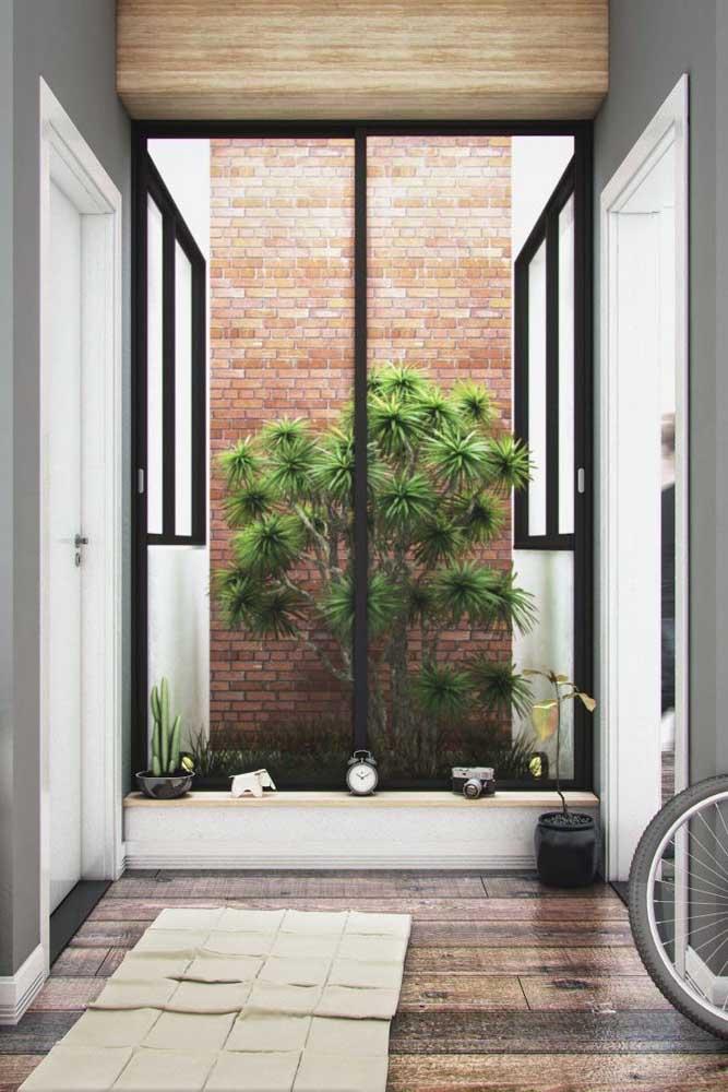 Ou você pode fazer o jardim em uma pequena sacada com parede.