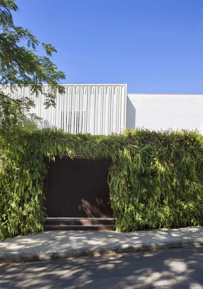 O portão marrom dessa casa ganhou uma bela moldura verde formada pelo jardim vertical