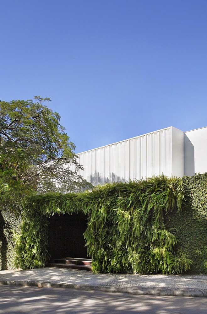 O muro com jardim vertical cobre toda a fachada dessa casa.