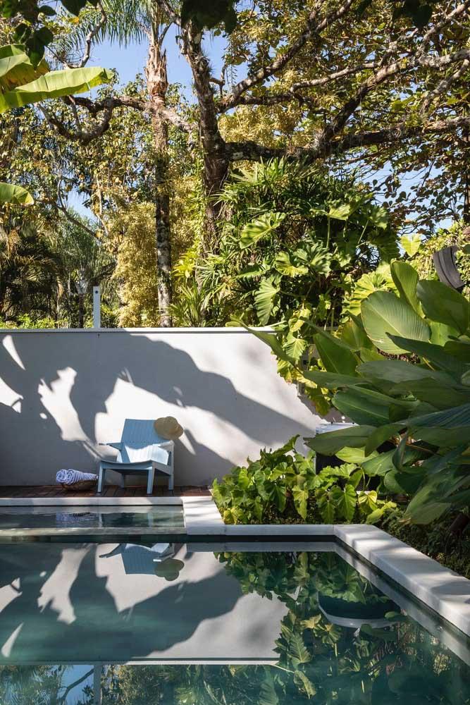 Construa a piscina em uma área totalmente verde para que você tenha contato direto com a natureza do local.