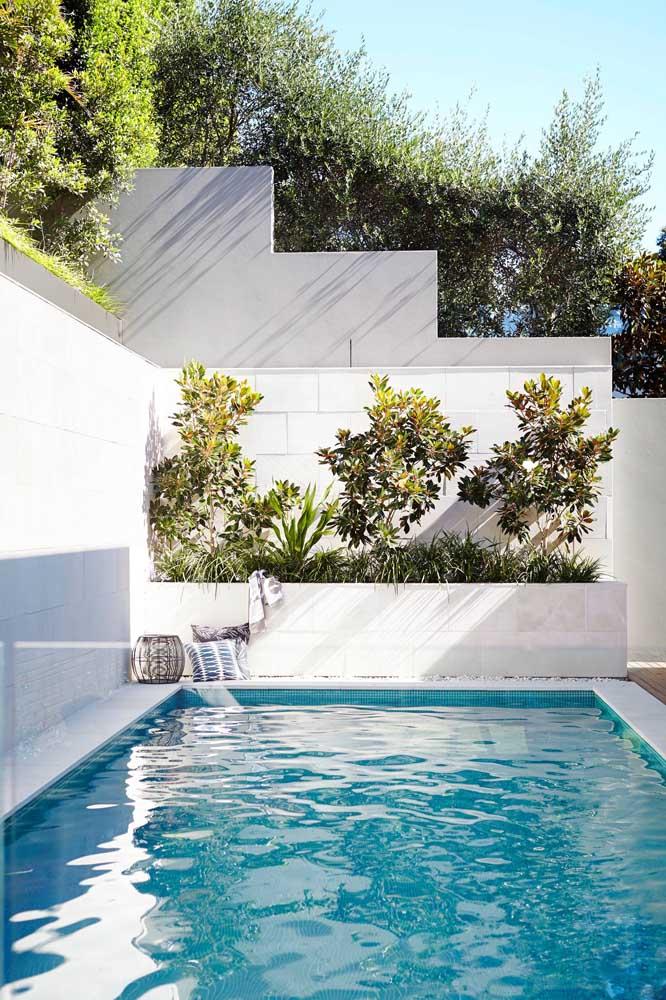 Quando a área é bem clara, o tamanho da piscina parece ser bem maior. No cantinho, cultive as plantas de sua preferência.
