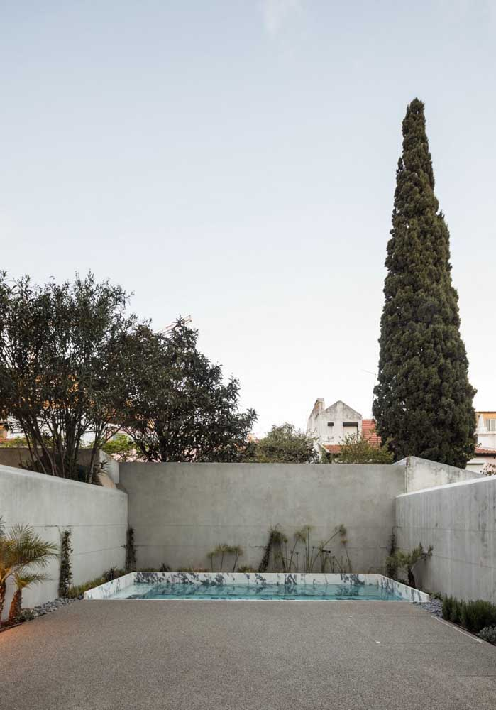 onstrua uma piscina no final do quintal da casa para ter uma área mais livre para circular.