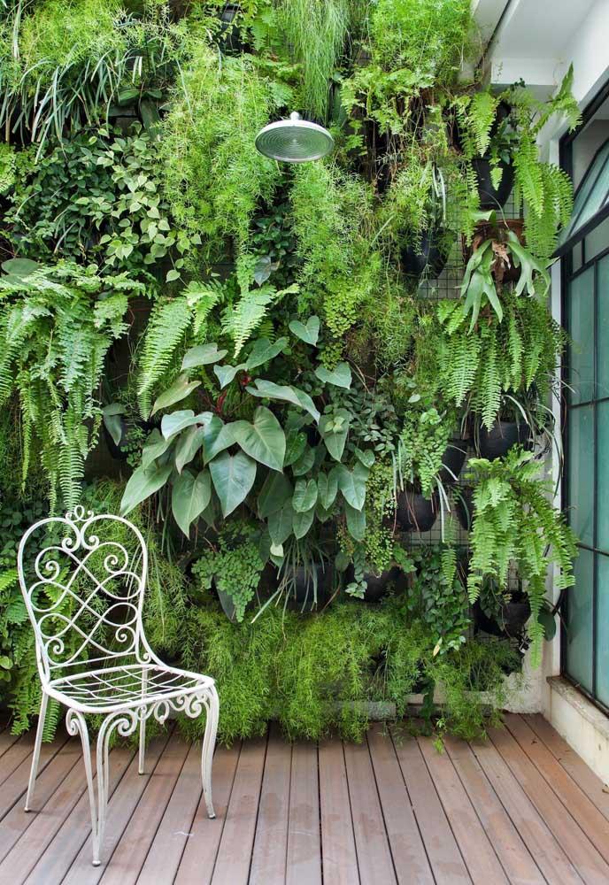 Quando não tem espaço no chão, coloque o jardim na parede