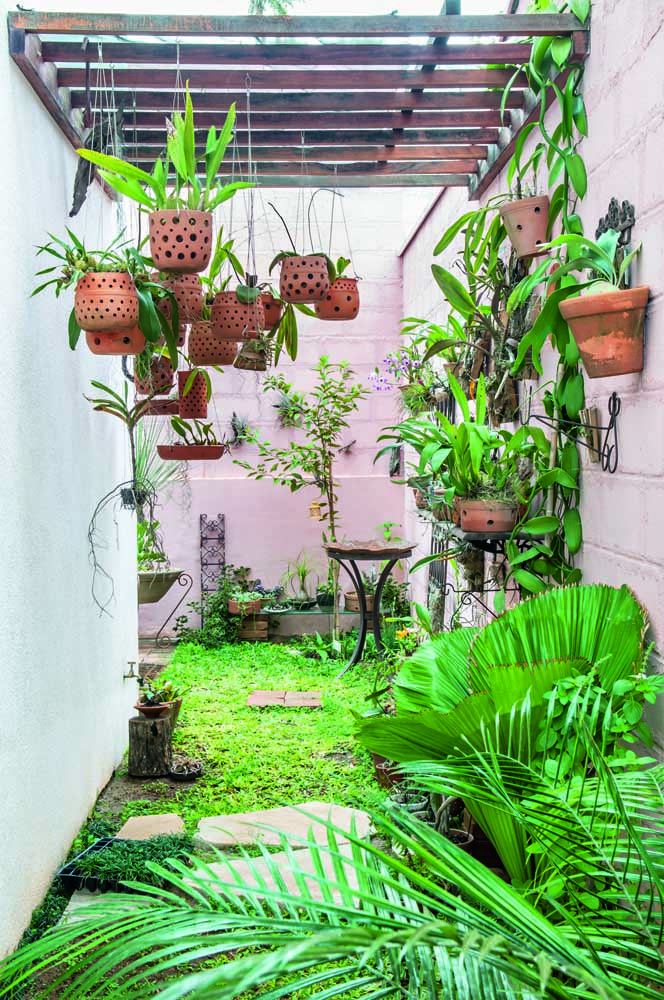 Mini jardim para os apaixonados por orquídeas