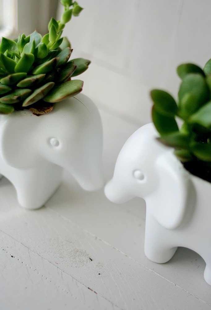 Um gracioso casal de elefantinhos adornados por pequenas suculentas