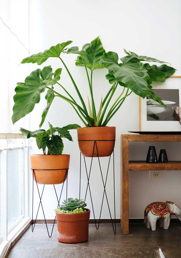 Os tradicionais vasos de barro incorporados a decoração com influência industrial