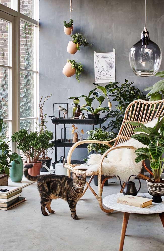 Plantas e muita iluminação natural são o destaque desse outro cantinho da leitura