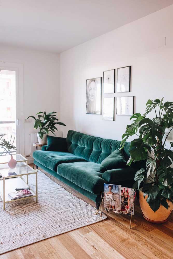 A decoração dessa sala de estar conta apenas com vasos de plantas, um revisteiro e alguns quadrinhos na parede