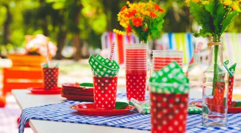 Festa Piquenique: como fazer, o que servir e dicas de decoração