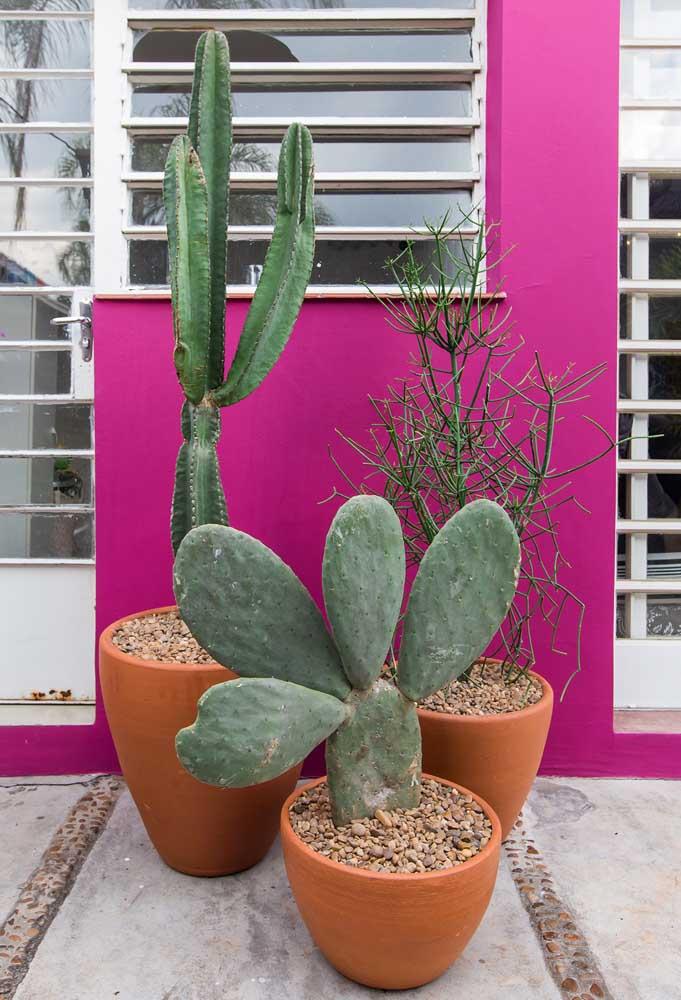 Quem disse que você não pode usar cores bem fortes na parte externa da casa?
