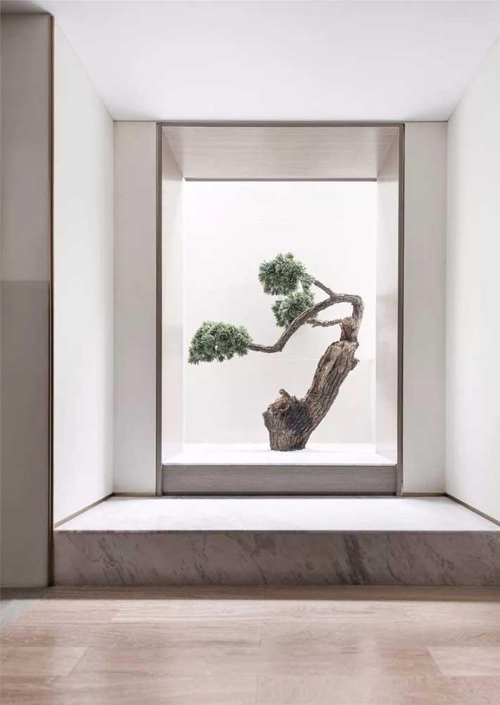 Destaque o seu bonsai na decoração usando uma luz especial junto dele