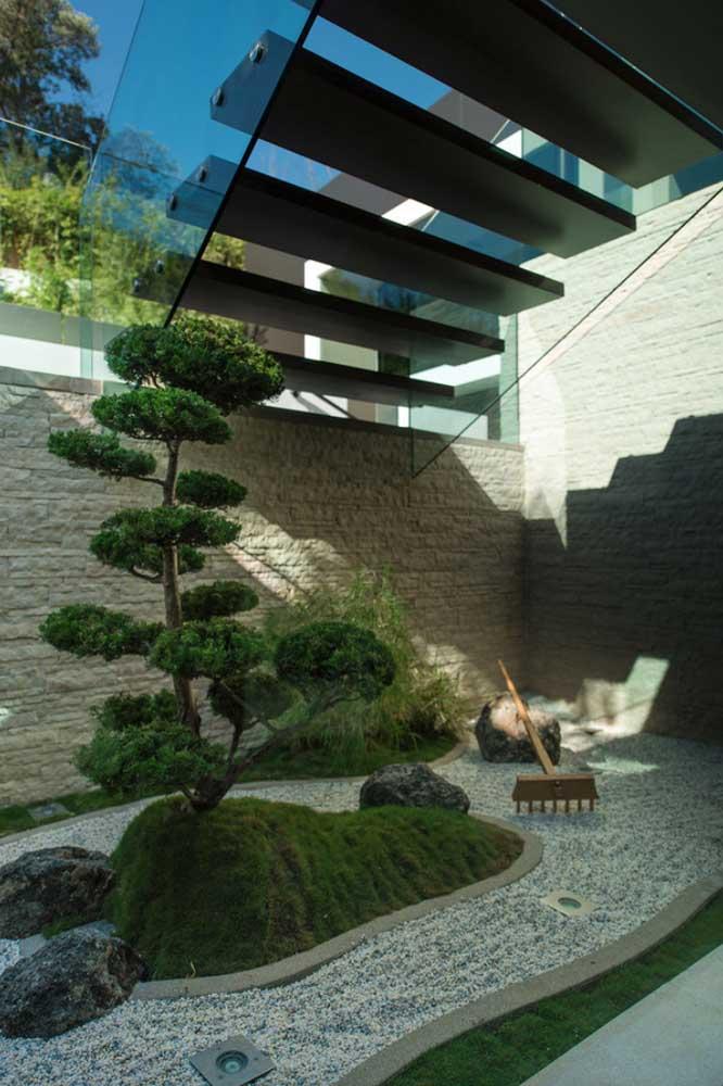 Experimente cultivar um bonsai maior no jardim