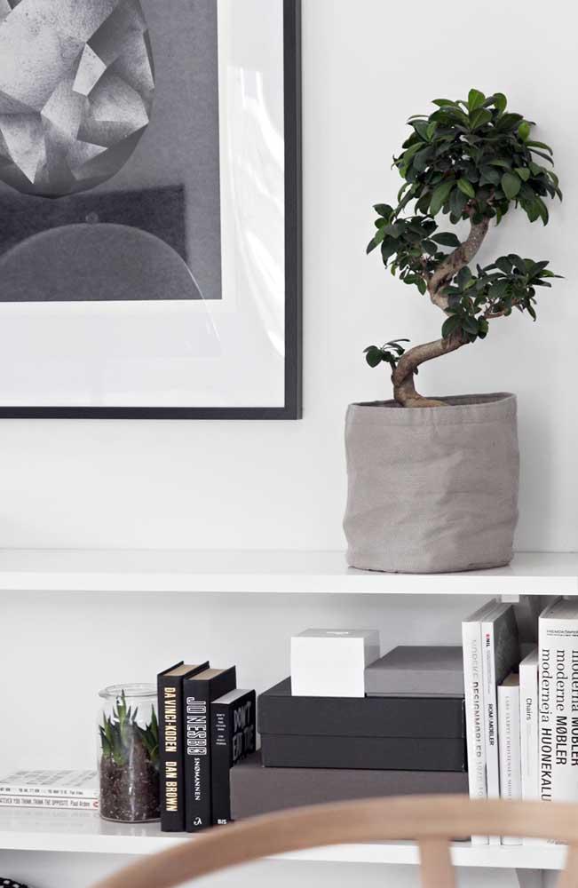 Aqui, o bonsai ganhou um cachepô de tecido na cor da decoração